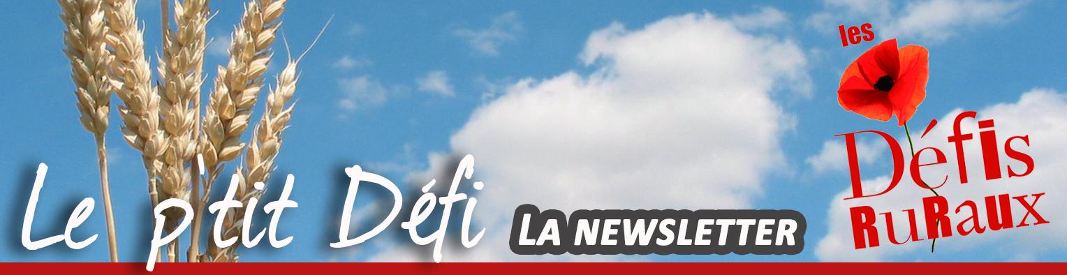 Le P'tit défi - newsletter des Défis Ruraux